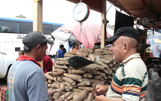 Con el salario mínimo solo se puede comprar un kilo de yuca en Barquisimeto