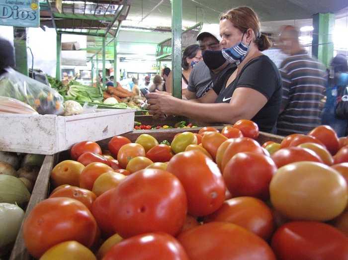 En Maracaibo el kilo de tomate aumentó 48% en quince días