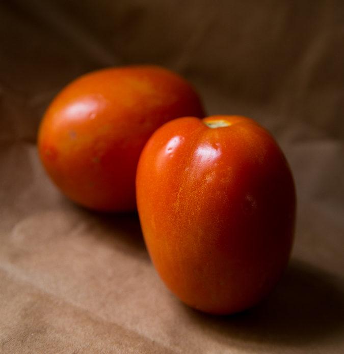 El tomate registró el mayor aumento de precios tanto en bolívares como en dólares en el occidente de Venezuela